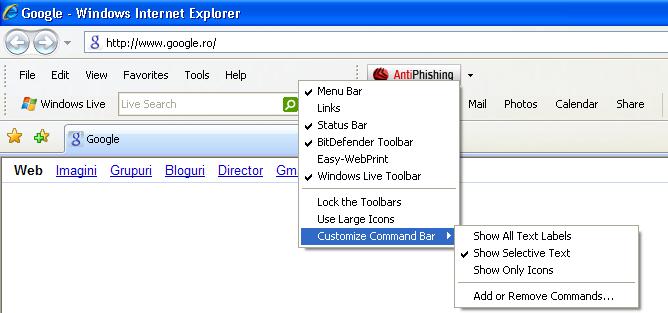 Internet Explorer sample menu